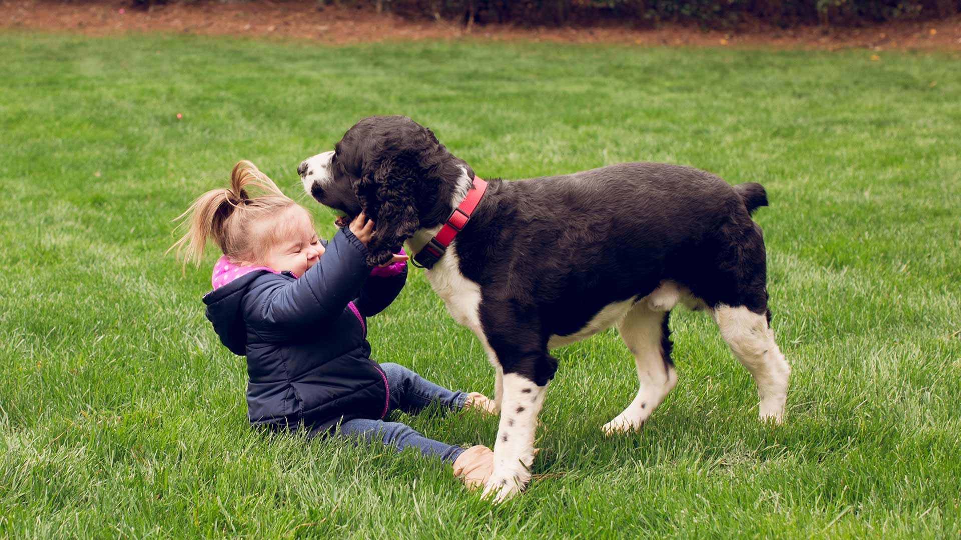 A girl and a dog playing on a green lawn that receives regular lawn care in Roswell, GA.